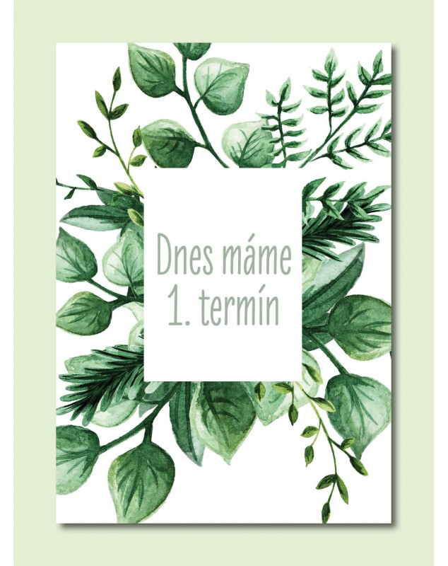 Tehotenské míľnikové kartičky Natural