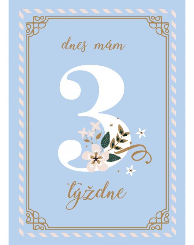 Míľnikové kartičky BLUE