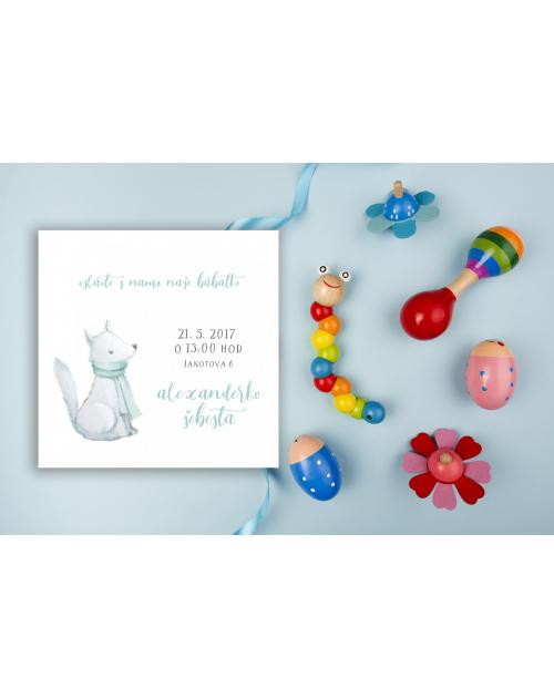 Pozvánka na detskú oslavu alebo baby shower DP6